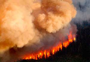 S17_RefamingCaliforniaWildfires1