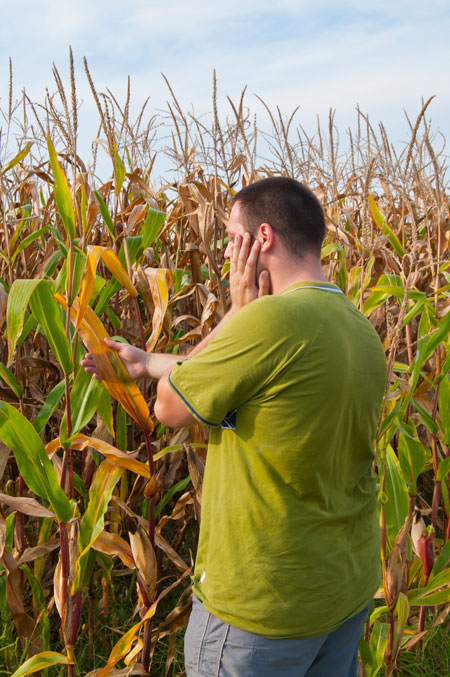 man-corn-drought-dreamstime-blog