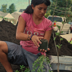 rain-gardens-girl-planting